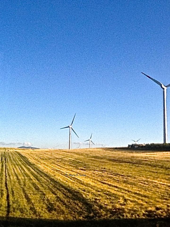 Taranto Futura: «Stop al parco eolico in mar Grande, chiarezza sul ruolo di Bondinell'Ilva»